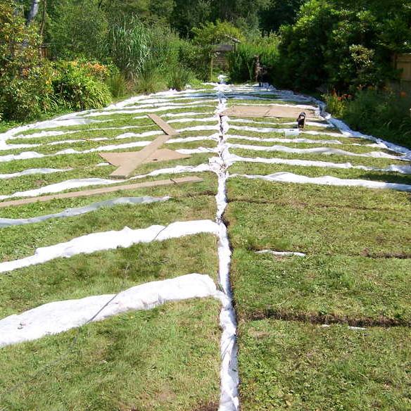 garden-lawn-drainage-landscape-services
