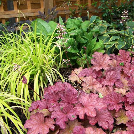 garden-planting-landscape-services